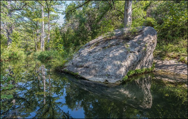 Triangular Boulder by Bald Cypress Trees 4315