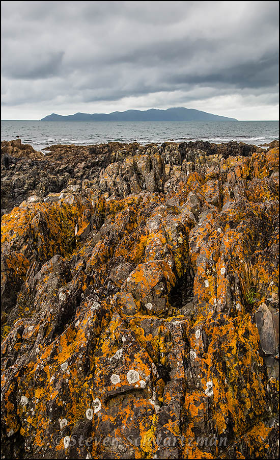 Rocks at Pukerua Bay 6485
