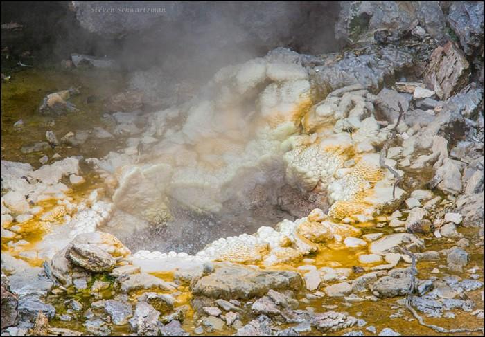 Geothermal Formation at Te Puia 6938