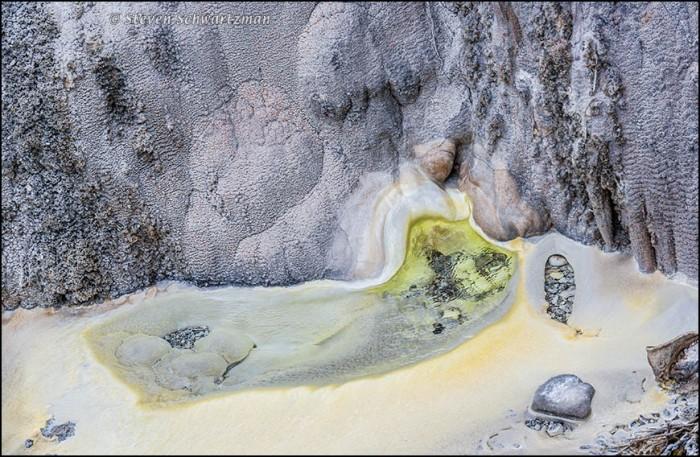 Geothermal Features at Te Puia 6696