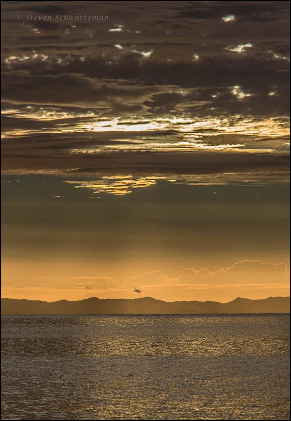 Hauraki Gulf at Sunrise from Little Manly Beach 8369