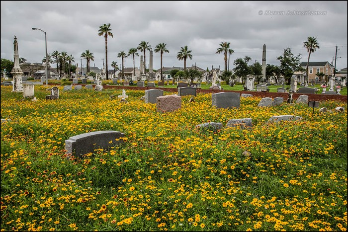 Old City Cemetery in Galveston 1806