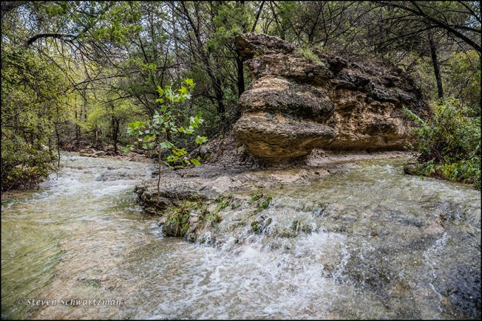 Confluence of Bull Creek Tributaries 8662