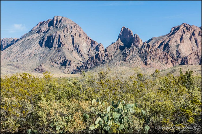 Chisos Mountains Scenery 0027