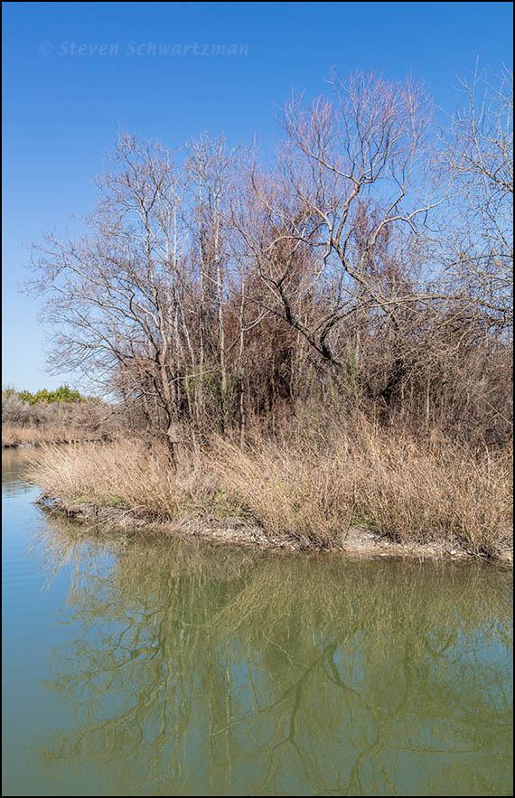 Butternut Creek Landscape 3774