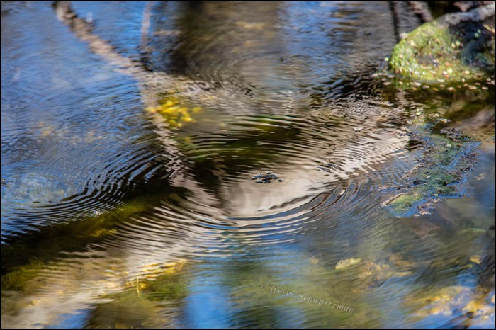 Creek Surface Abstraction 6941