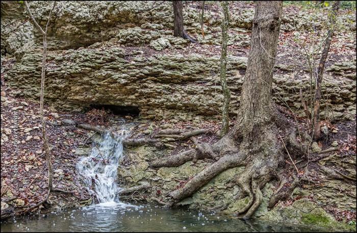 Underground Spring Emerging 5944