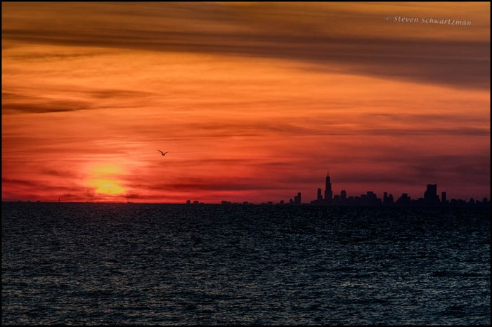 Chicago Skyline at Sunset Seen from Indiana Dunes 8398