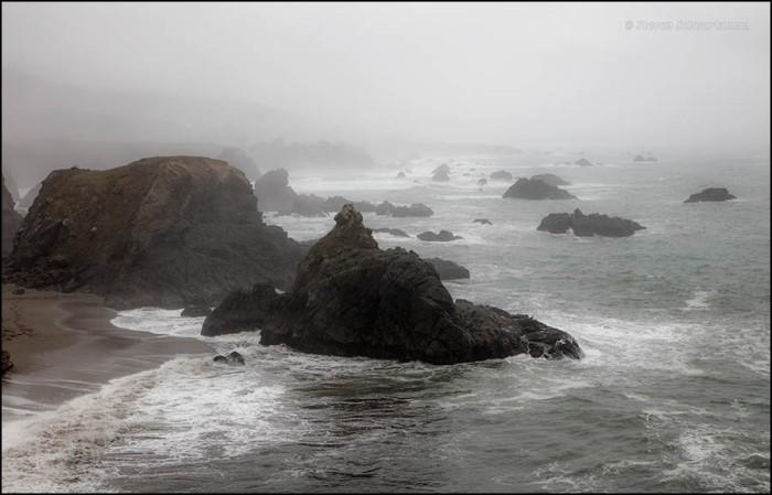 duncans-cove-pacific-coastscape-7438
