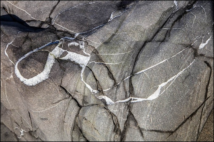 rock-with-white-veins-8940