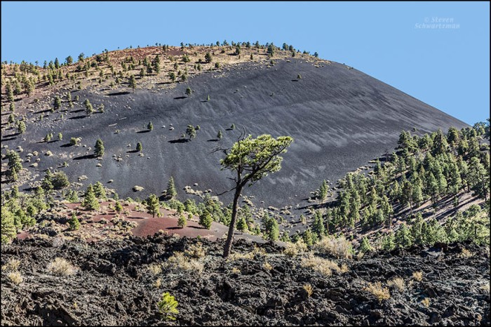 sunset-crater-cinder-cone-with-pine-trees-3766