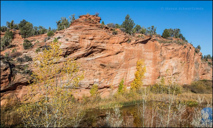 utah-fall-foliage-by-rocks-and-pond-4255
