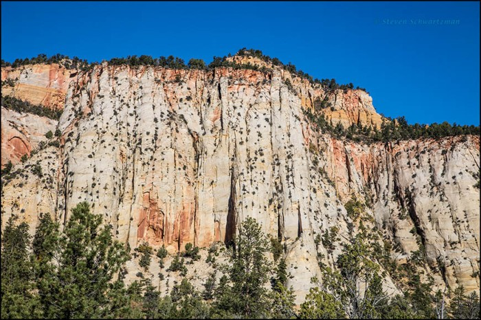 zion-national-park-landscape-4280