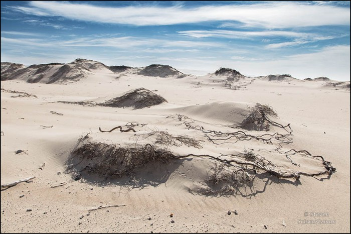 rancho-guadalupe-dunes-0871